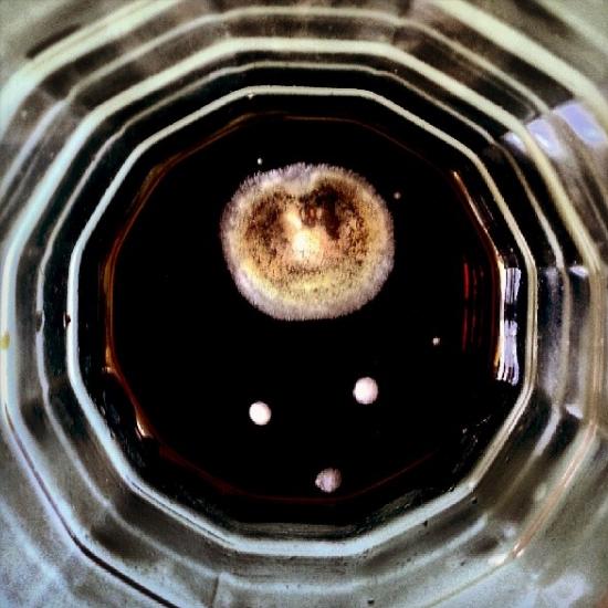 mouldinaglass