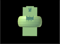 SelfemployedLCS